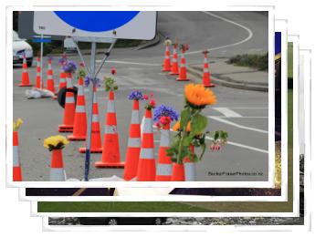 Becker Fraser Earthquake Photographs February 2012