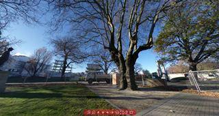 Focus360 Panoramas: Cambridge Terrace, between Hereford Street and Cashel Street