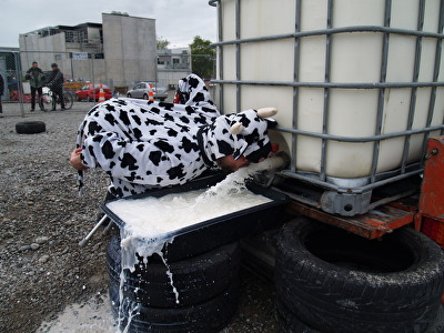 Milk Fight Photograph 9